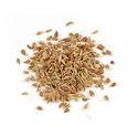 Thumb h61 anise seed whole main